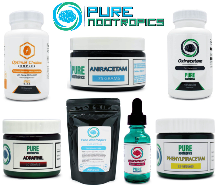 Pure Nootropics Supplements (Powder City Alternative)