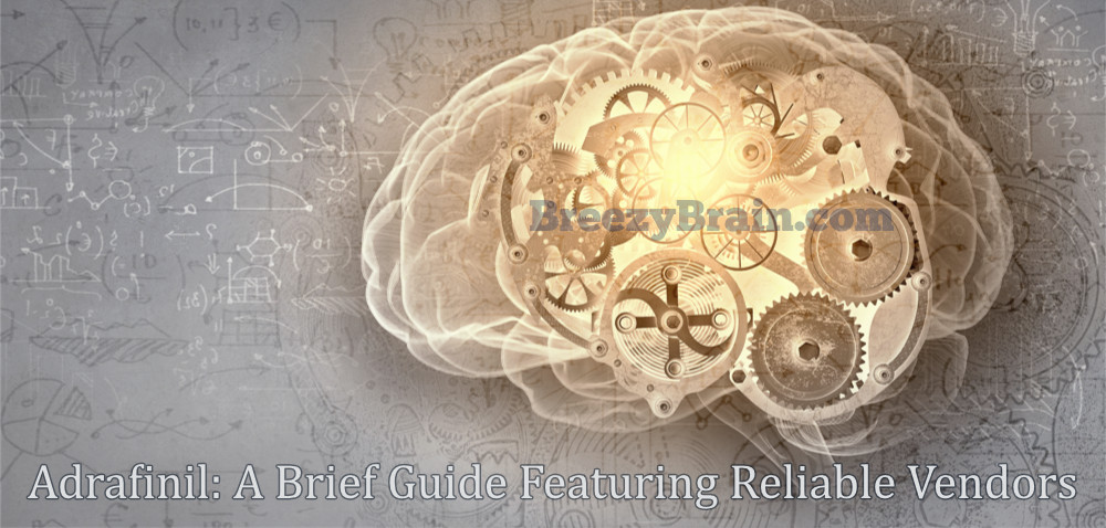 Adrafinil Guide Featuring Reliable Vendors