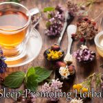 Best Sleep-Promoting Herbal Teas